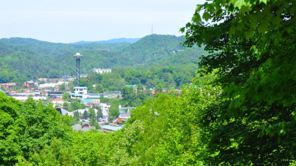 3 Reasons Why Condos in Gatlinburg for Rent are Better than a Hotel
